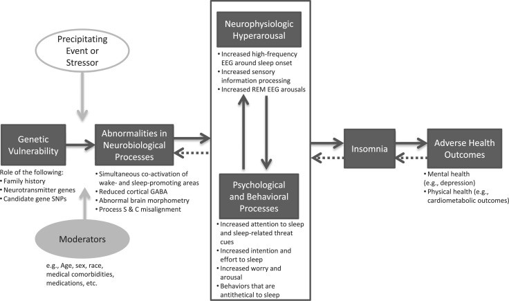 Patofisiologi dan faktor-faktor Insomnia