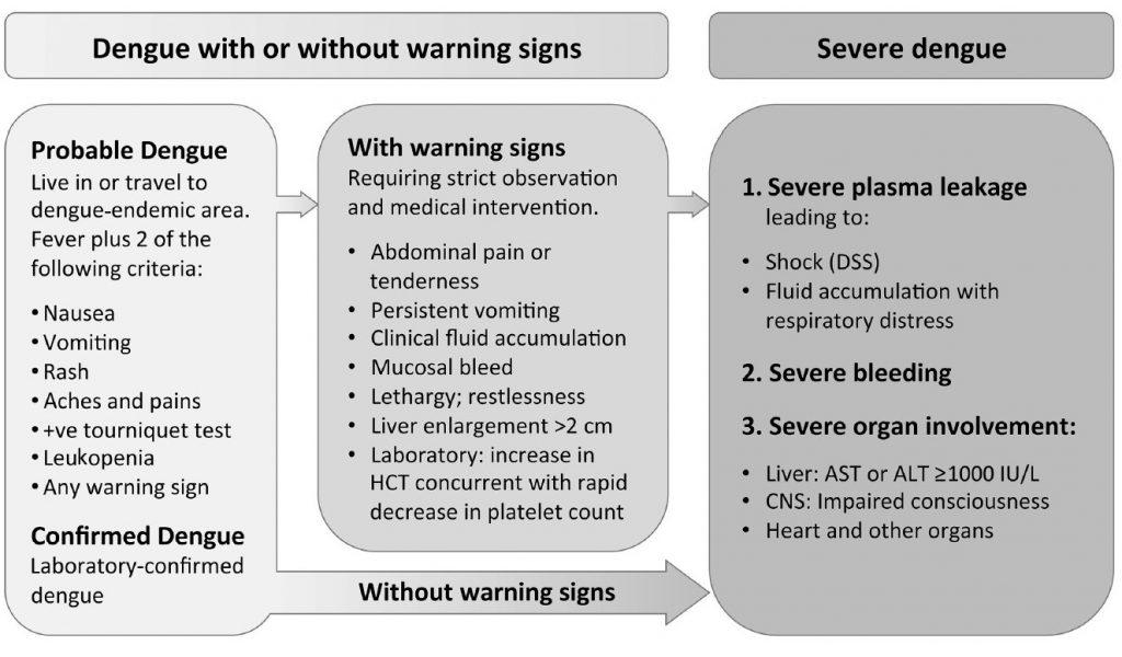Klasifikasi Demam Berdarah Dengue