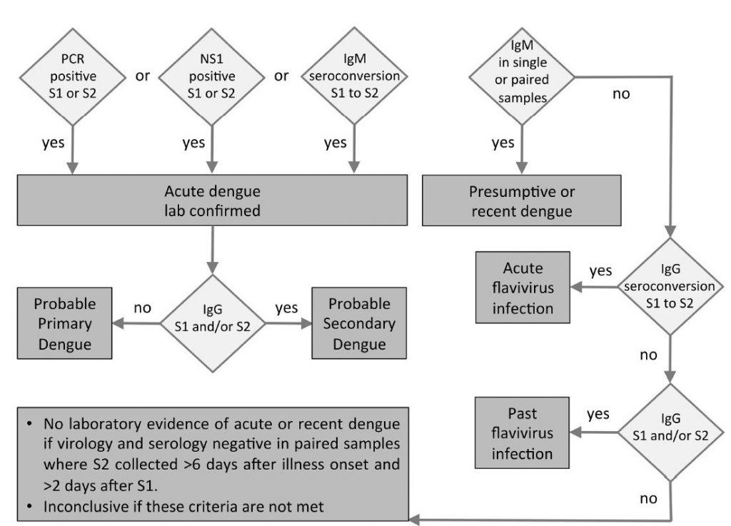 Algoritma Demam Berdarah Dengue