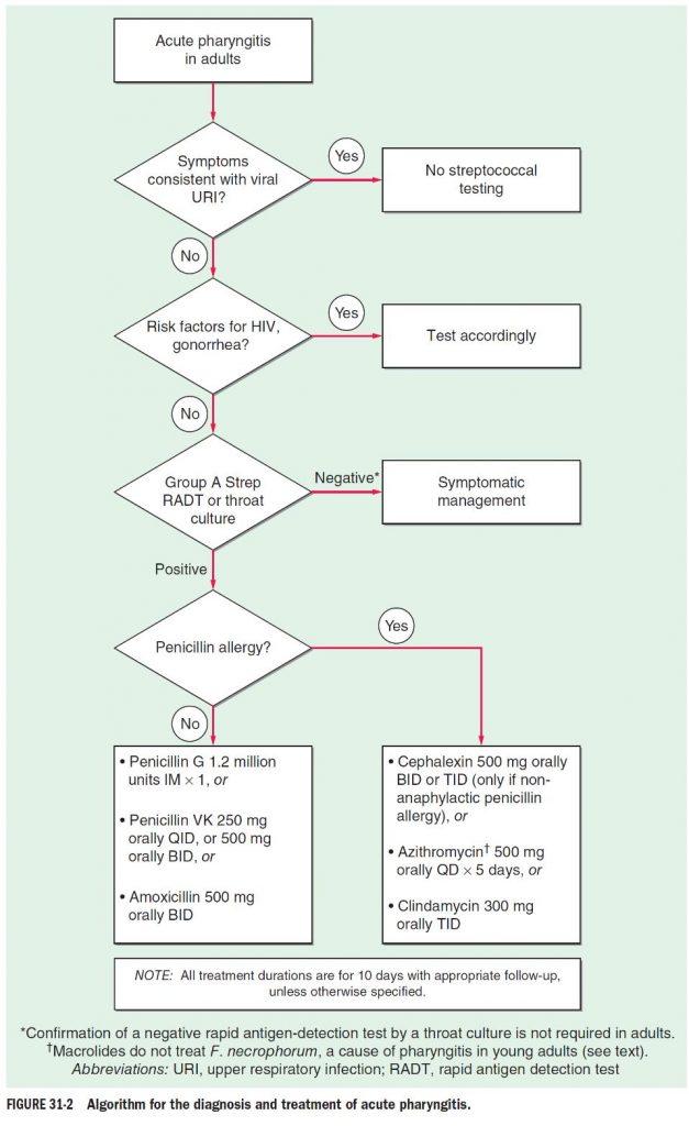 algoritma faringitis