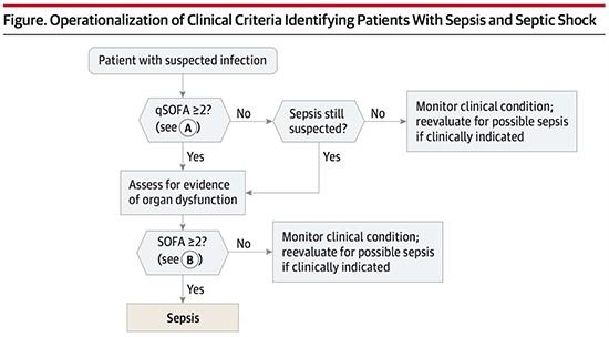 Alur diagnosis sepsis qSOFA dan SOFA